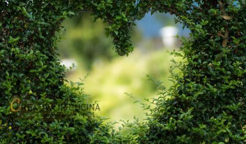 Spesa sostenibile, 15 consigli utili